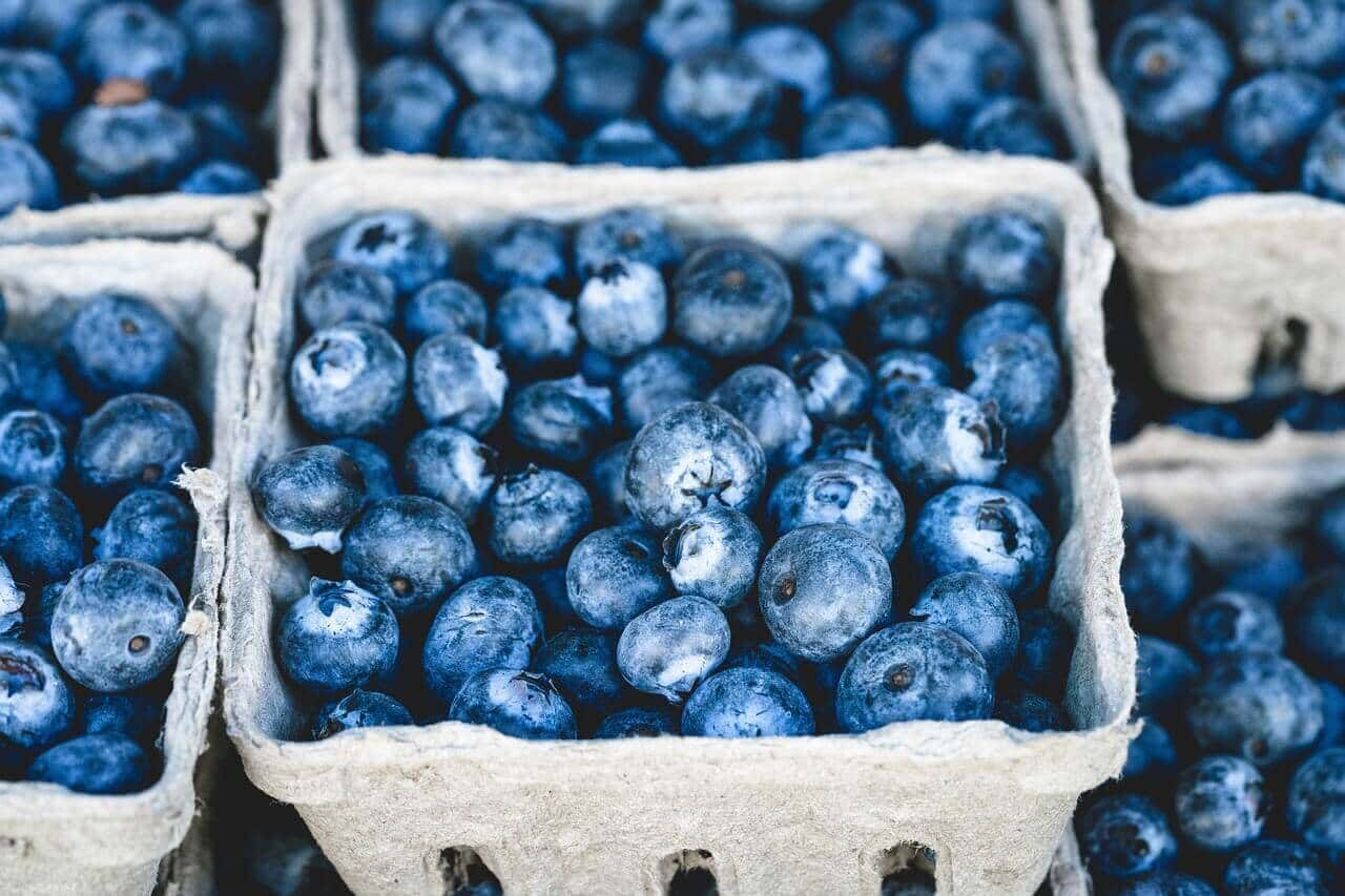 Blueberries Energy Booster