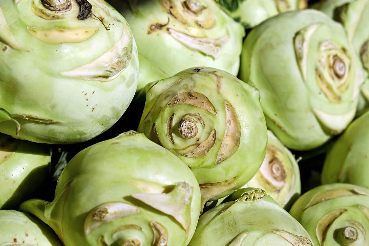Kohlrabi Best Vegetables to Juice