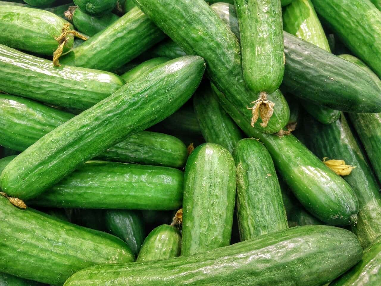 Cucumbers Low Carb Juice