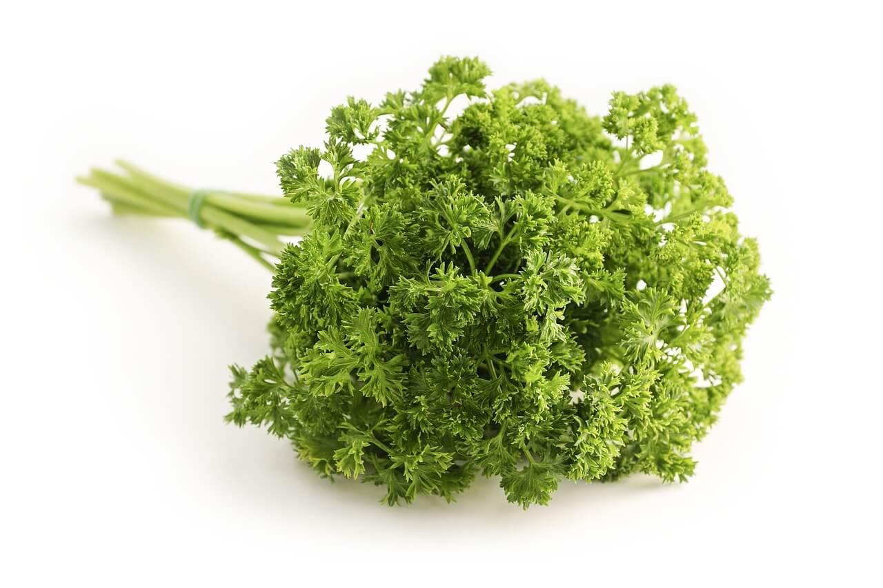 Parsley Low Carb Juice