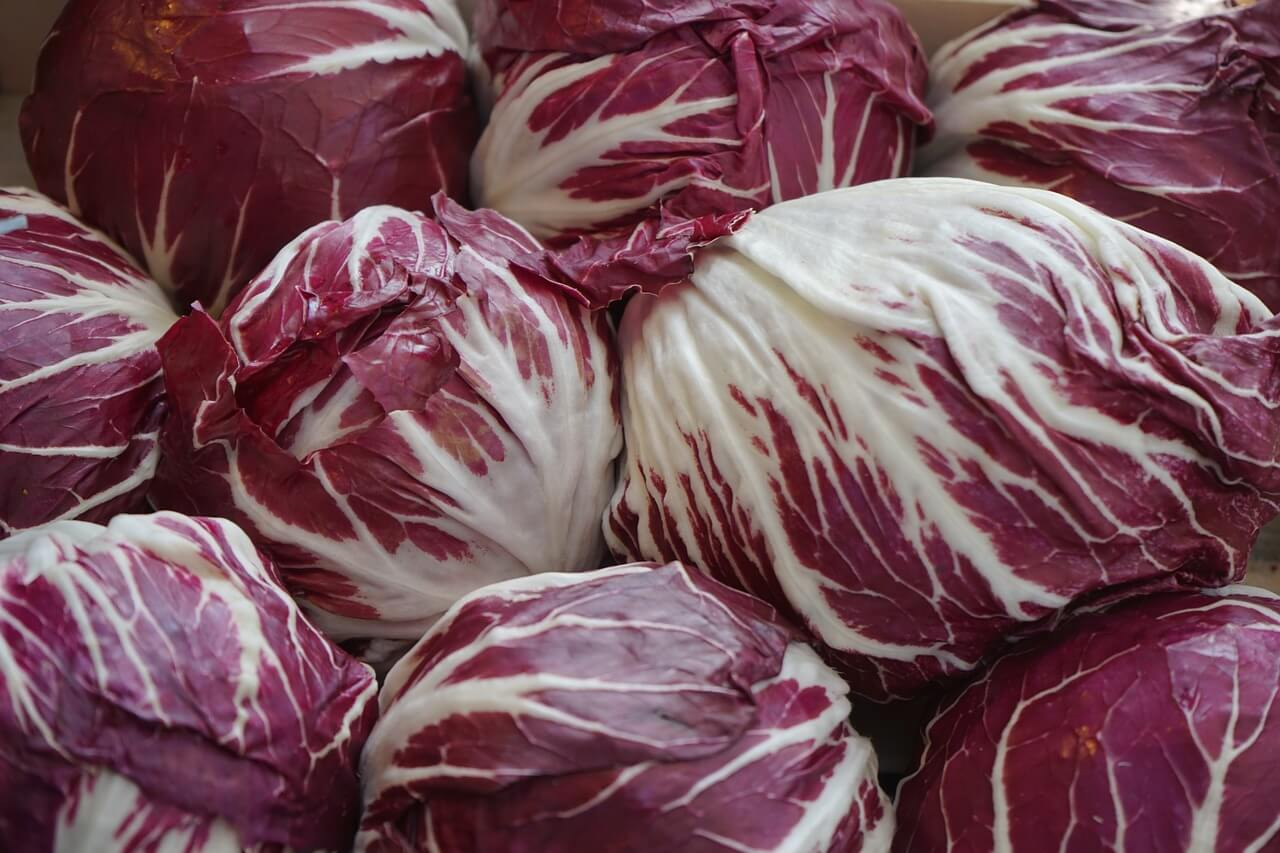 Radicchio Low Carb Juice