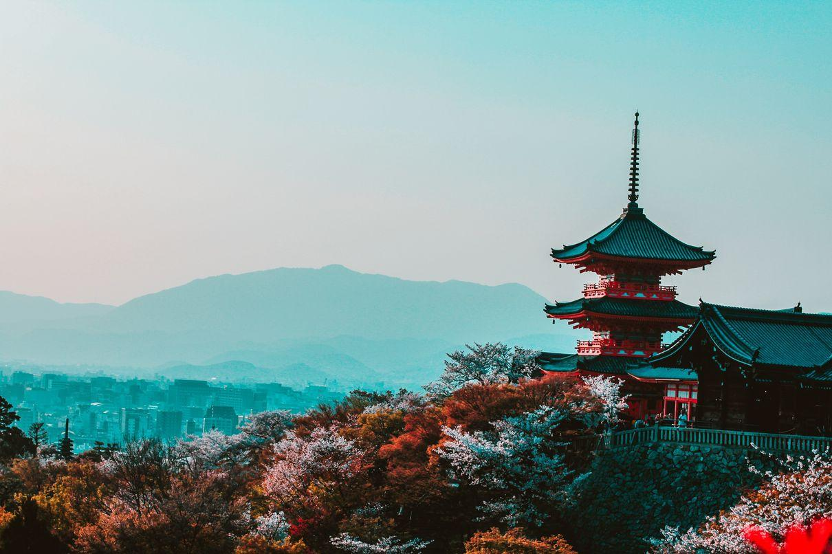 Aojiru Benefits