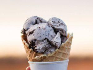Vegan Ice Cream Ninja Blender