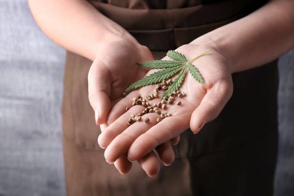 Young Woman Holding Hemp