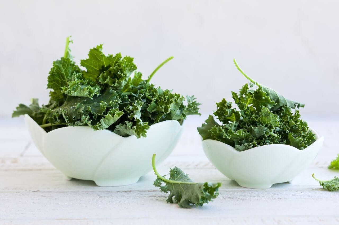 Freezing Kale Leaves