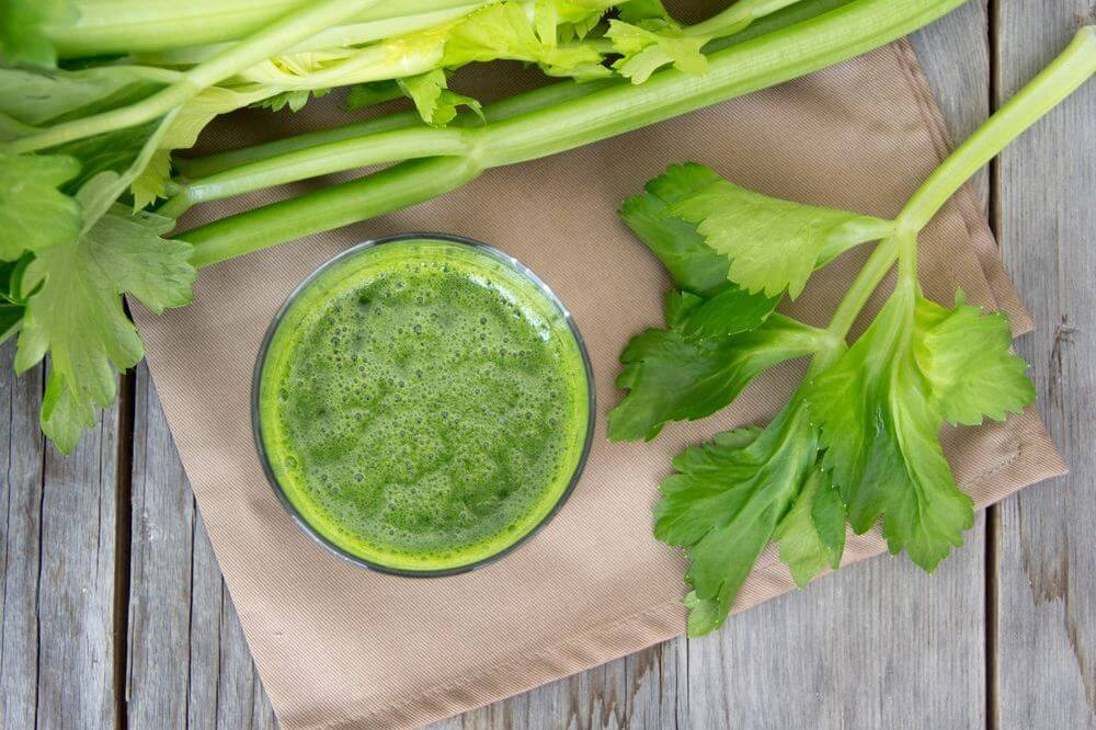 Celery Smoothie Nutribullet Weight Loss