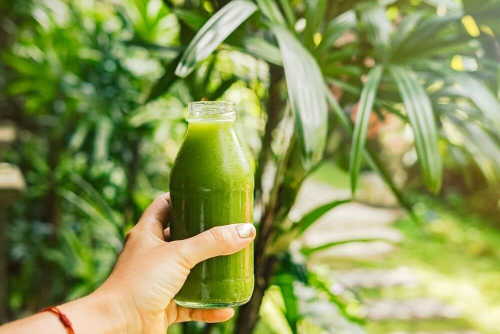 Chilled Weight Loss Green Juice