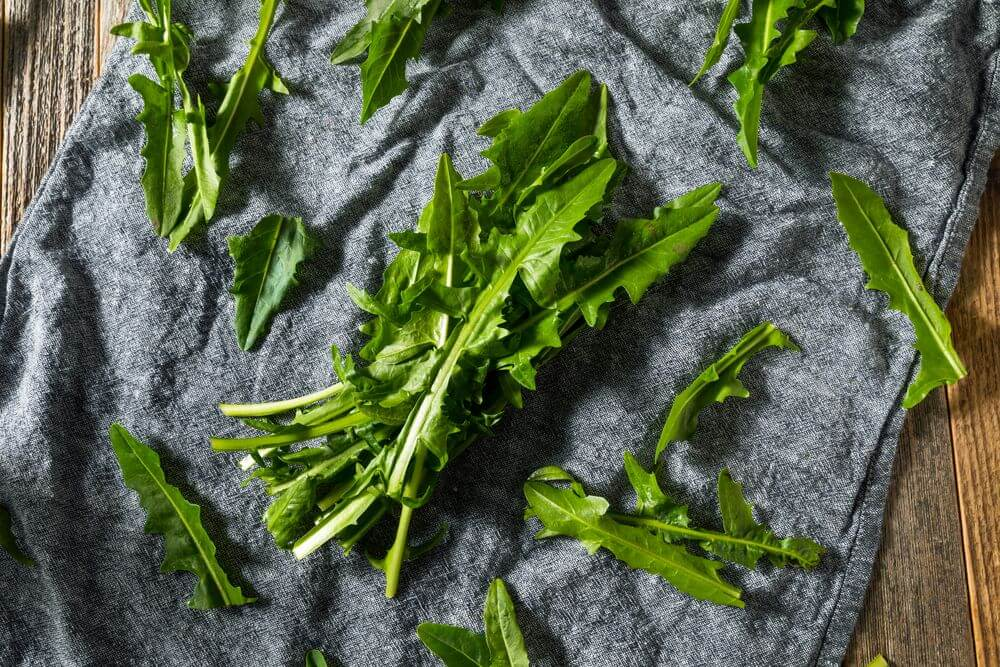 Raw Dandelion Greens