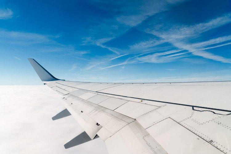 Take Blender on Plane