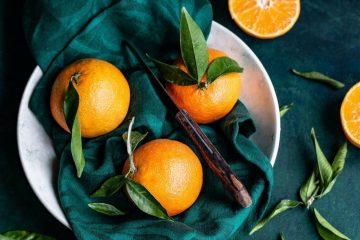 Best Juicer for Oranges